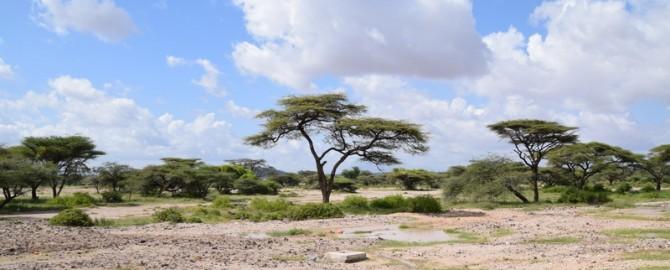 21_Kenia_Fahrt-nach-Marsabit